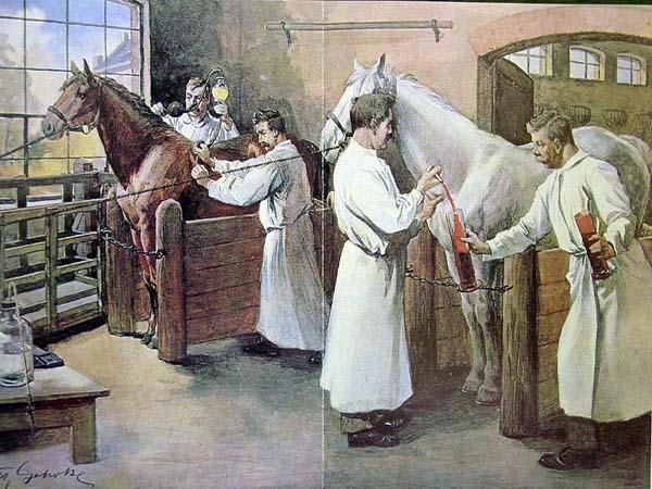 dunyada-veteriner-hekimligi-tarihi